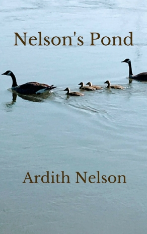 Nelson's Pond ebook